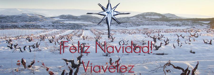 Feliz Navidad desde Viavélez
