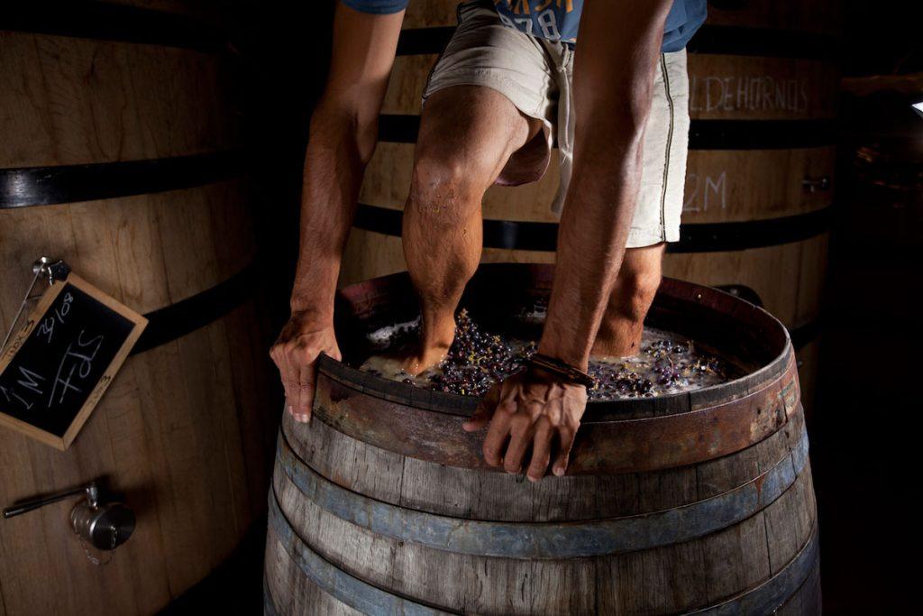 Los vinos de Bodegas Marañones en Viavélez Madrid