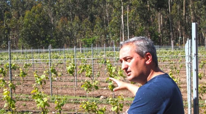 Bodegas y viñedos Rodrigo Méndez en Viavélez
