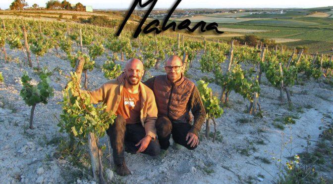 Mahara Viticultores en Viavélez