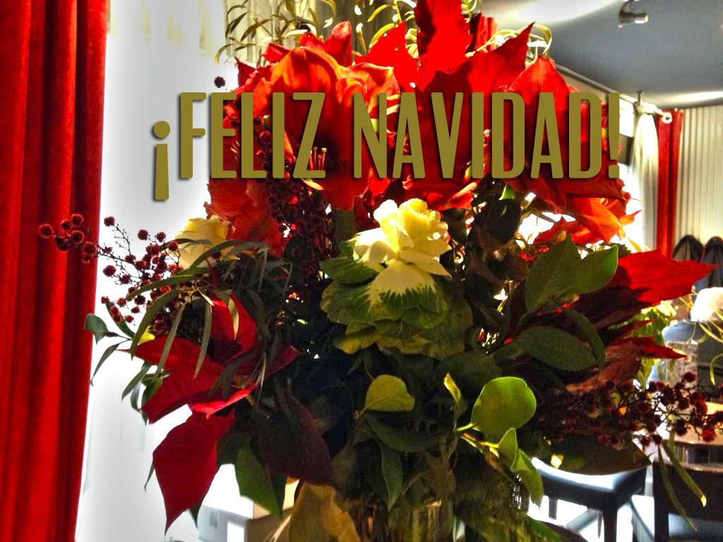 Feliz-Navidad_viavelez
