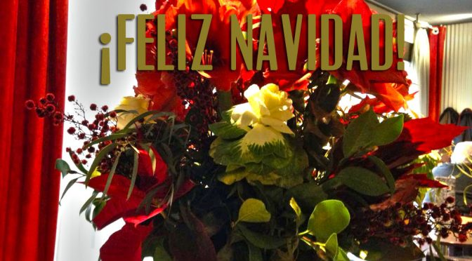 Viavélez os desea Feliz Navidad