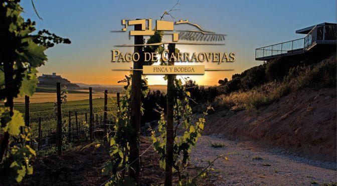 Cena con Bodega Pago de Carraovejas en Viavélez